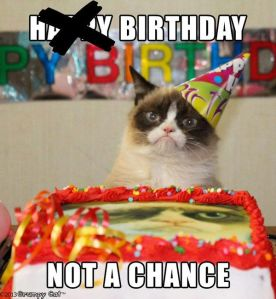 grumpycatfirstbirthday2
